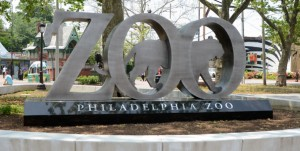 Philly-Zoo-project-page-header-1125x397